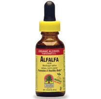 Alfalfa Herb Extract Liquid