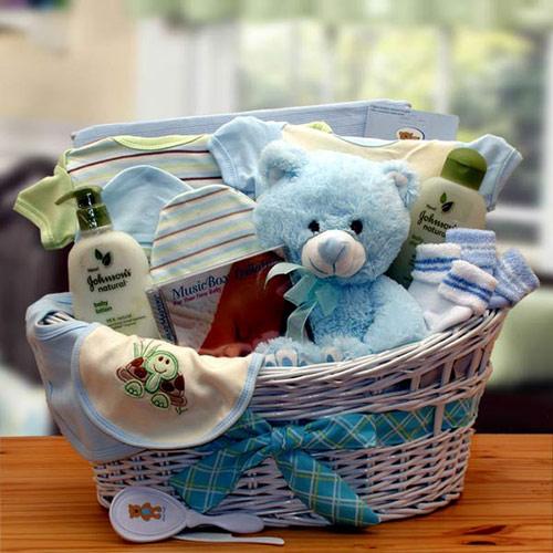 Image of Deluxe Organic New Baby Gift Basket, Blue, Elegant Gift Baskets Online
