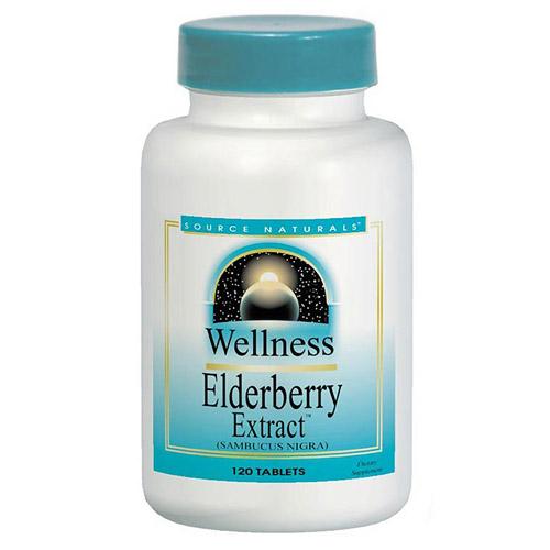 Elderberry Extract (Wellness Elderberry) 500mg 120 tabs from Source Naturals