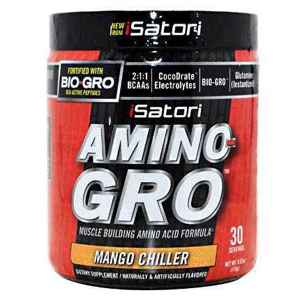 iSatori Amino-Gro, Muscle Building Amino Acid Formula, 9.52 oz (30 Servings)