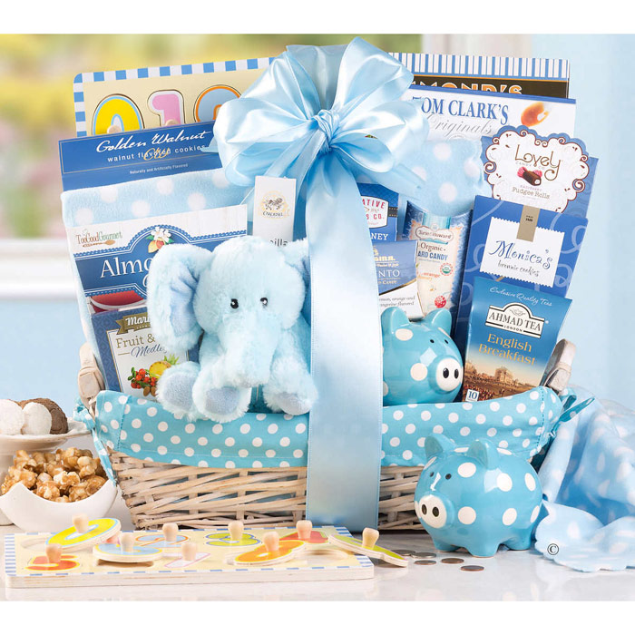 New Arrival Baby Boy Gift Basket (Plush Toy, Baby Blanket, Cookies & More Gifts for Baby and Parents)