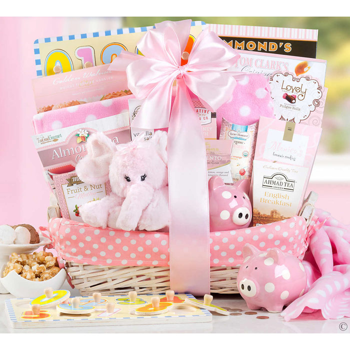 New Arrival Baby Girl Gift Basket (Plush Toy, Baby Blanket, Cookies & More Gifts for Baby and Parents)