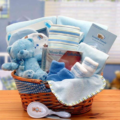 Simply The Baby Basics New Baby Gift Basket, Blue, Elegant Gift Baskets Online