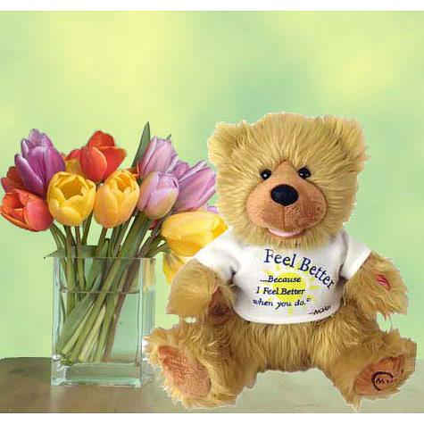 Singing Plush, Noah The Feel Better Bear 14 Inch, Elegant Gift Baskets Online