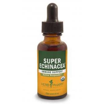Super Echinacea Extract Liquid, 1 oz, Herb Pharm