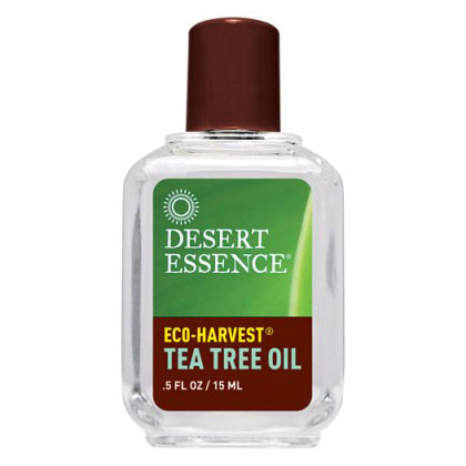 Tea Tree Oil Eco-Harvest